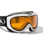 Foto:Alpina Free Spirit Skibrille